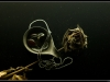 still_chain_rose1
